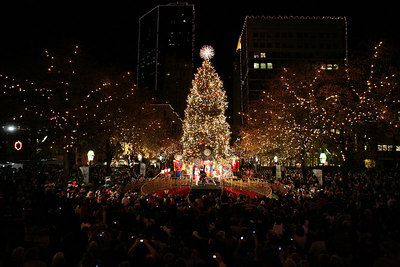 limo holiday light tours dallas tx